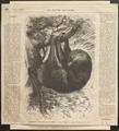 Bradypus tridactylus - 1700-1880 - Print - Iconographia Zoologica - Special Collections University of Amsterdam - UBA01 IZ21000149.tif