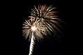 Bray Fireworks (6994408545).jpg