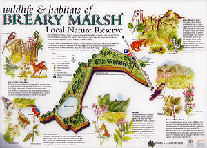 Breary Marsh - Map Sign