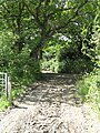 Bridleway At East Hook Farm - geograph.org.uk - 1416716.jpg