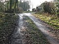 Bridleway from Dean's Farm - geograph.org.uk - 1702365.jpg