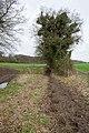 Bridleway from Dundridge Lane - geograph.org.uk - 1774742.jpg