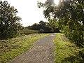 Bridleway in Elvaston Castle Park - geograph.org.uk - 1023449.jpg