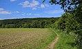 Brochterbeck Teutoburger Wald 03.JPG