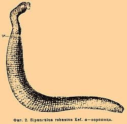 Brockhaus and Efron Encyclopedic Dictionary b76 525-0.jpg