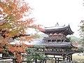 Byodo-in National Treasure World heritage Kyoto 国宝・世界遺産 平等院 京都53.JPG