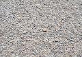 Còdols de la platja de la Grava, Xàbia.JPG