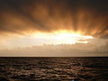 CSIRO ScienceImage 8320 Sunset over the Tasman Sea.jpg