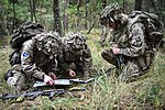 C Squadron from the Queen's Royal Hussars conduct Junior NCO Cadre. MOD 45161764.jpg