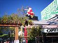 Cafe Flore Christmas 2009.jpg