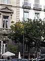 Calle Alcalá (5107110186).jpg
