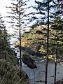Cape Disappointment, trail to lighthouse, Dec. 2011.JPG