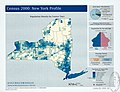 Census 2000, New York profile - population density by census tract LOC 2003623746.jpg