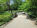 Central Park May 2019 34.jpg