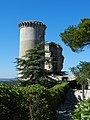 Château de Châteaurenard - panoramio.jpg