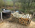 Charcoal Burner, Bouth Woods.jpg