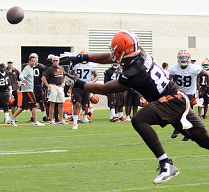 Charles Johnson (wide receiver, born 1989) - Johnson with the Browns in 2014
