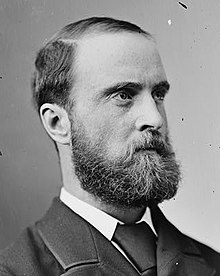 Image illustrative de l'article Charles Stewart Parnell
