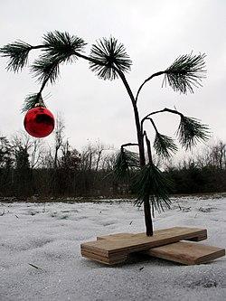 Charlie Brown tree - 20101217.jpg