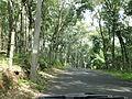 Chayalode Road.JPG