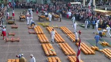 File:Cheese market in Alkmaar 02.webm