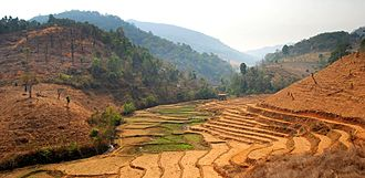 Mae Chaem District - Rice paddies and recently cleared forest land along Rte 1263, Mae Chaem District