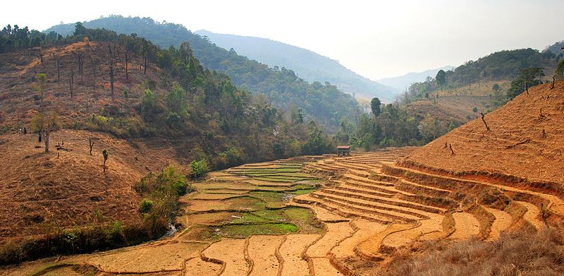 800px-Chiang_mai_province_road_1263.jpg