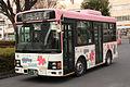 ChichitetsuKankoBus 302 YuyuBus-sakura.JPG