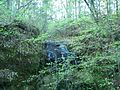 Chipley Falling Waters SP waterfall04.jpg
