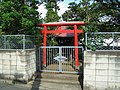 Chitose Inari Shrine (千歳稲荷神社) - panoramio.jpg