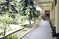 Chittagong University Library garden (05).jpg