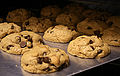 Chocolate chip cookies in the oven, March 2008.jpg