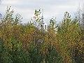 Church of the Protection of the Theotokos (Mil'ukovo)34.jpg