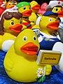 City Ducks Karlsruhe - panoramio.jpg