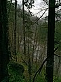 Clackamas Wild and Scenic River (27727562000).jpg