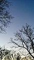 Clear Sky 1 (190735141).jpeg