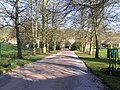 Clearwell Castle driveway - geograph.org.uk - 683655.jpg