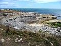 Cliff top, Portland Bill, Dorset - geograph.org.uk - 2019675.jpg
