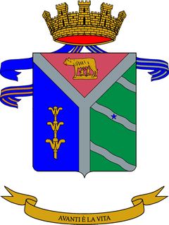 8th Paratroopers Engineers Regiment (Italy)