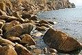 Coastline at Penberth Cove - geograph.org.uk - 307743.jpg