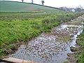 Cockwood Marsh - geograph.org.uk - 138306.jpg