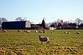 Coldharbour Farm, Plummer Lane, Tenterden, Kent - geograph.org.uk - 1186332.jpg