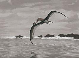 """""""Coloborhynchus piscator"""" door John Conway geeft een typisch voorbeeld weer van een pterosauriër"""