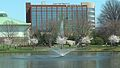 Colonial Bank Building behind fountain at Big Springs Park.jpg