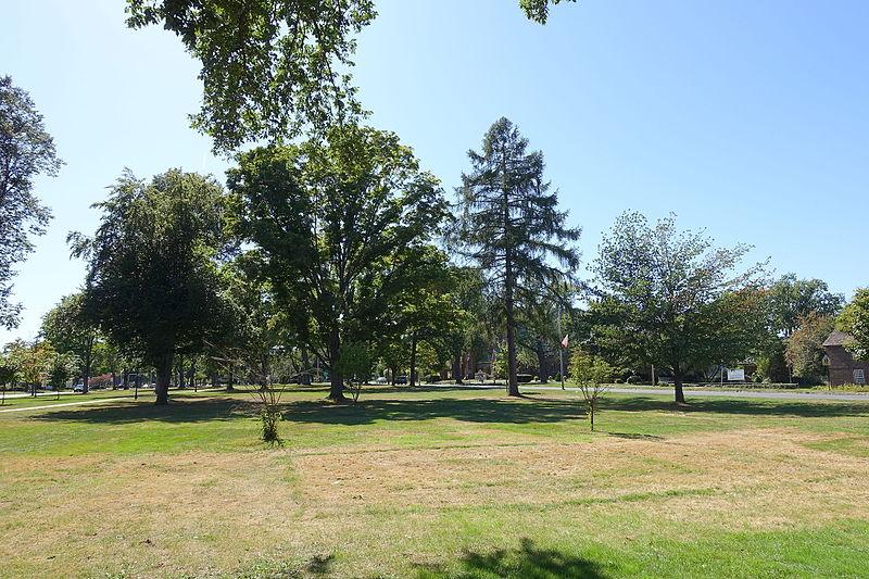 File:Common - West Springfield, Massachusetts - DSC02535.JPG