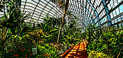 Conservatory wide angle.jpg