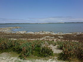Image illustrative de l'article Parc national de Coorong