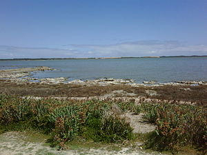 Coorong National Park - The Coorong looking across its midpoint near Salt Creek