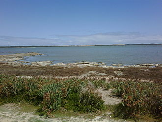 Coorong National Park - The view across the Coorong near Salt Creek