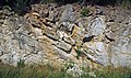 Copper Creek Thrust Fault (Thorn Hill section, northeastern Tennessee, USA) 11.jpg